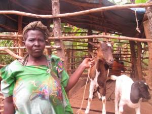 GOAT Cotilda Nakayunga, Gayaza Sub County