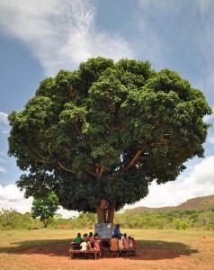 Mango Tree School - 2014 (2)
