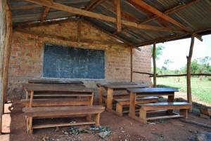 Mango Tree School - 2014 (5)